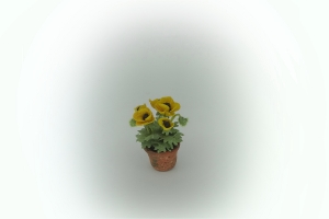 1/24th Scale Dollshouse Yellow Poppies