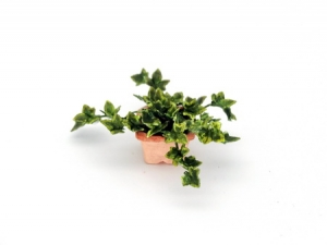 Handmade 1/12th/ 1 inch scale dollshouse English Ivy